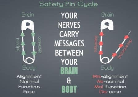 Safety Pin Cycle in Cary NC
